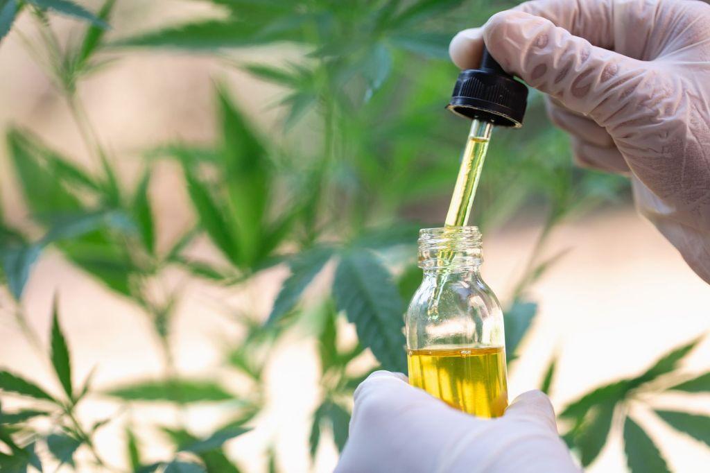 コロナの予防に効果的なCBD 医療大麻