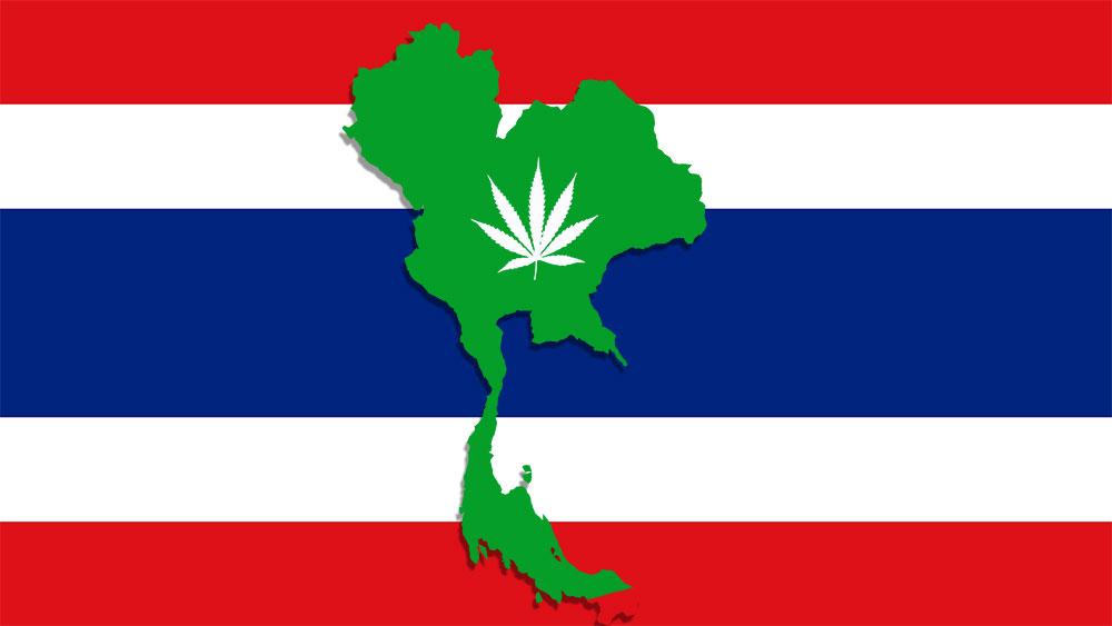 医療大麻 医療用CBD タイの医療大麻