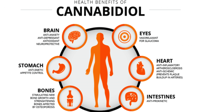 CBDとは、CBDとは 効果、CBDとは 医療、CBDとは 違法、CBDとは 合法